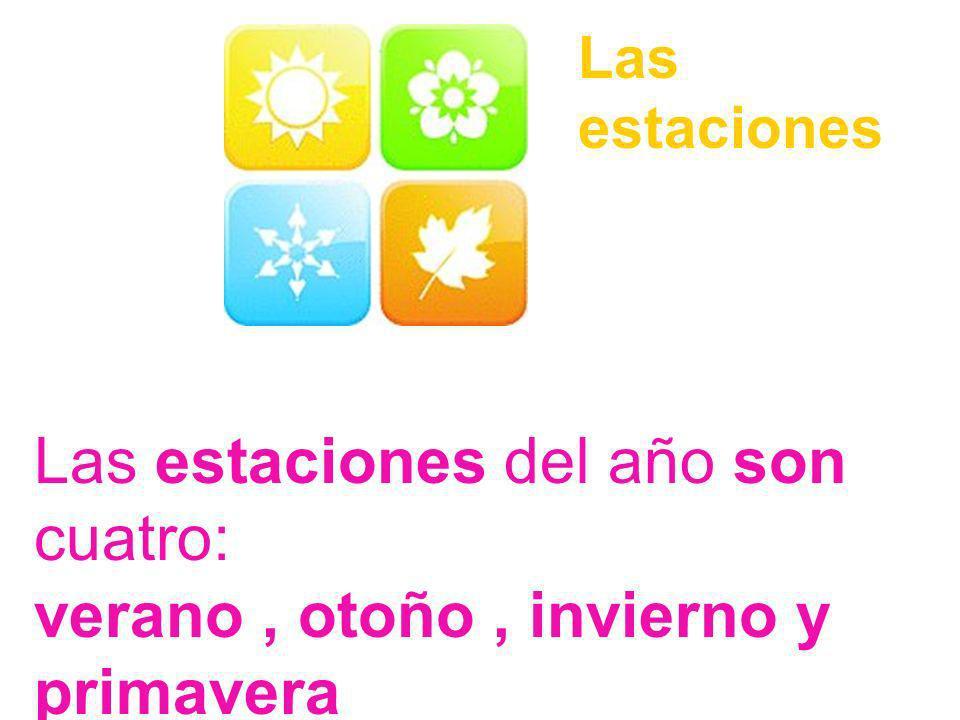 Las estaciones del año son cuatro: