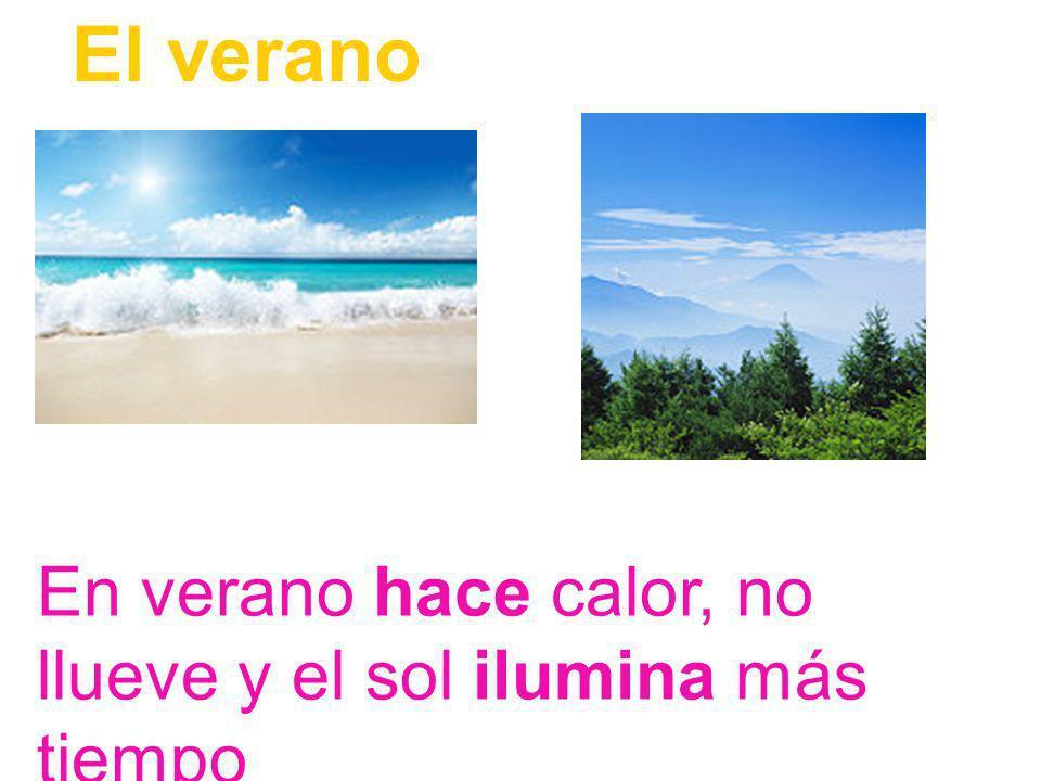 El verano En verano hace calor, no llueve y el sol ilumina más tiempo