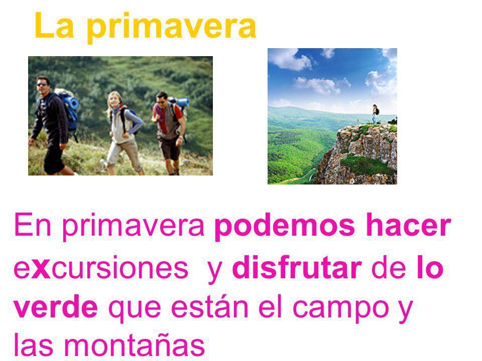 La primaveraEn primavera podemos hacer excursiones y disfrutar de lo verde que están el campo y las montañas.