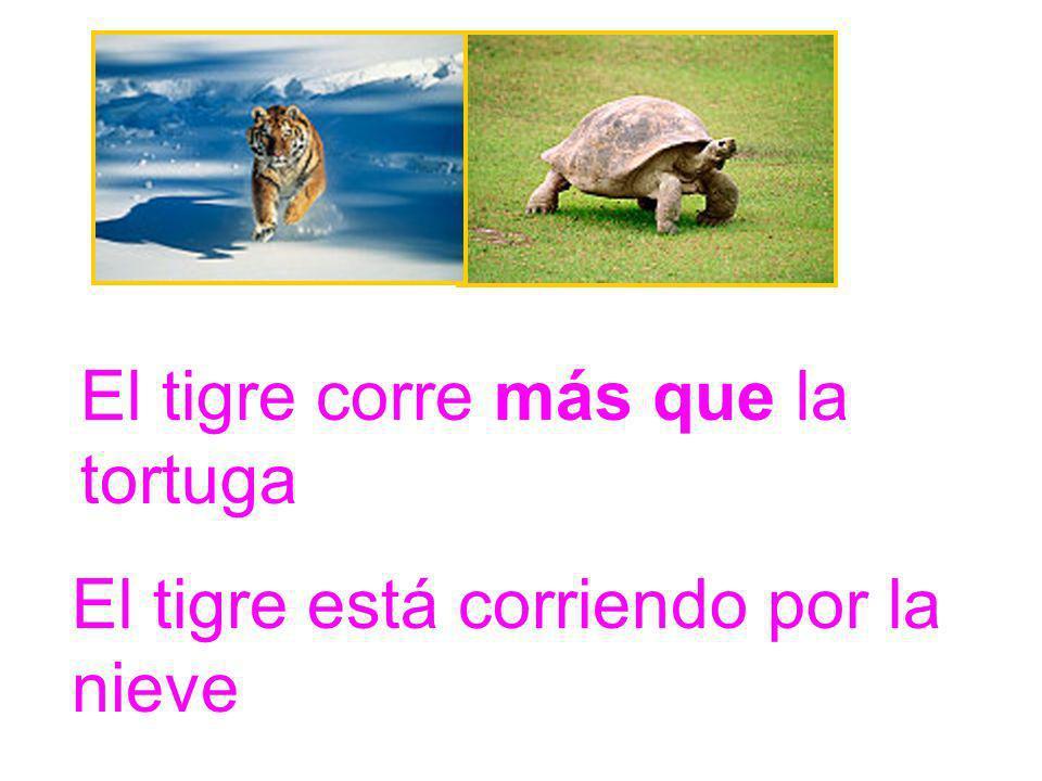 El tigre corre más que la tortuga