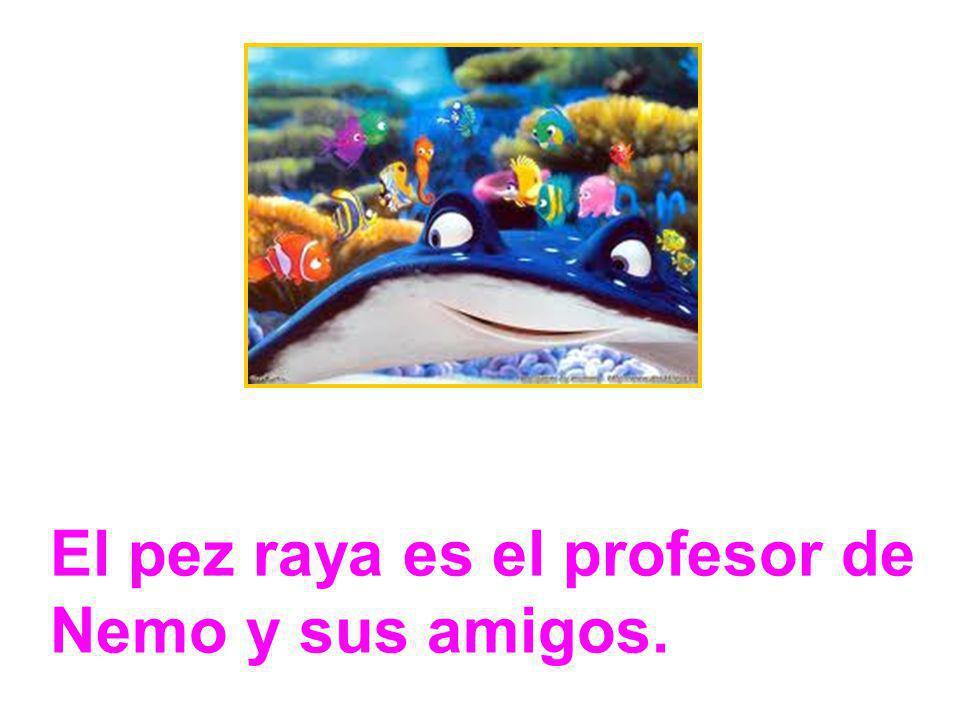 El pez raya es el profesor de Nemo y sus amigos.