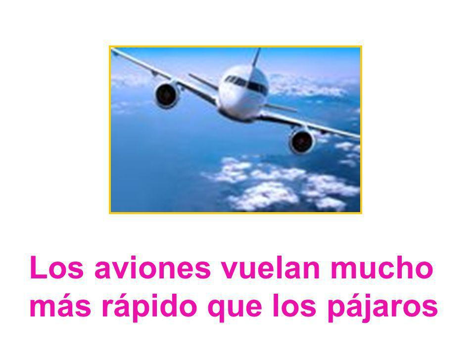 Los aviones vuelan mucho más rápido que los pájaros