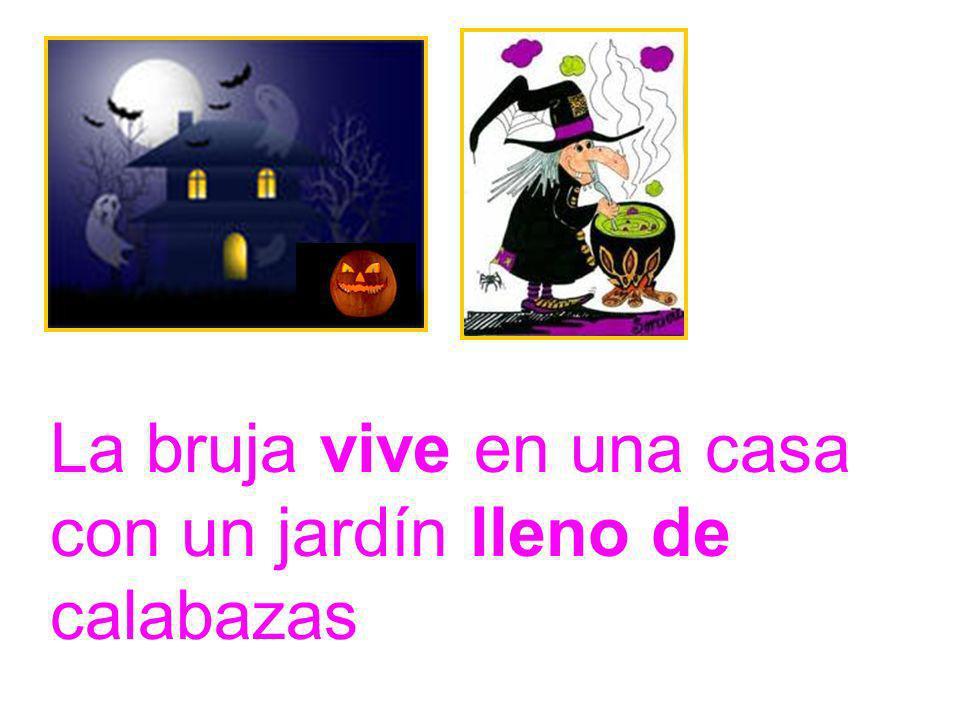 La bruja vive en una casa con un jardín lleno de calabazas