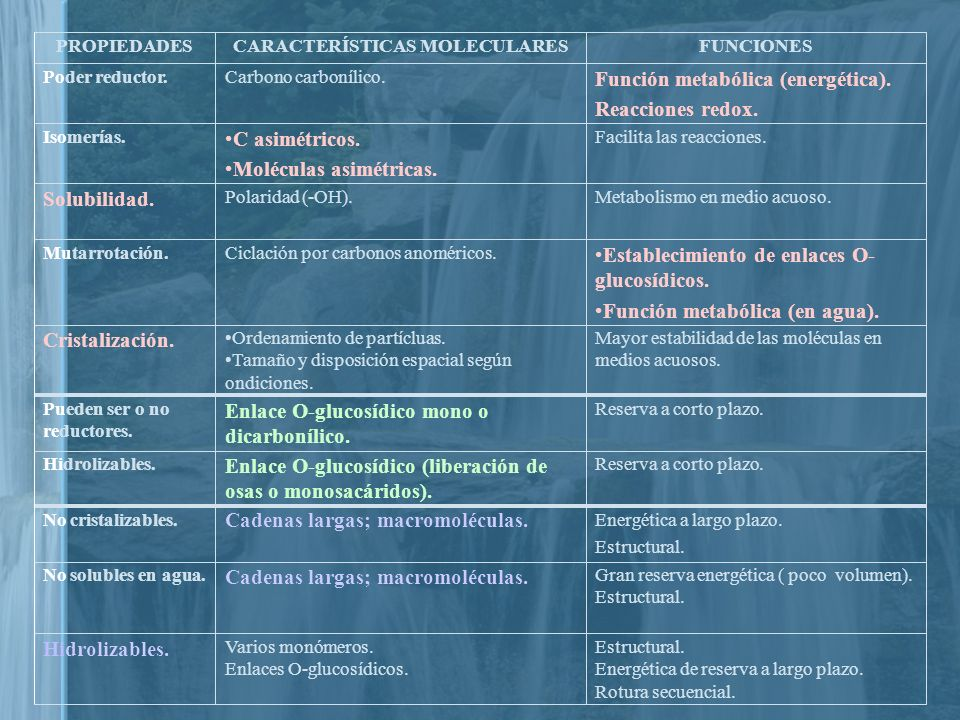CARACTERÍSTICAS MOLECULARES