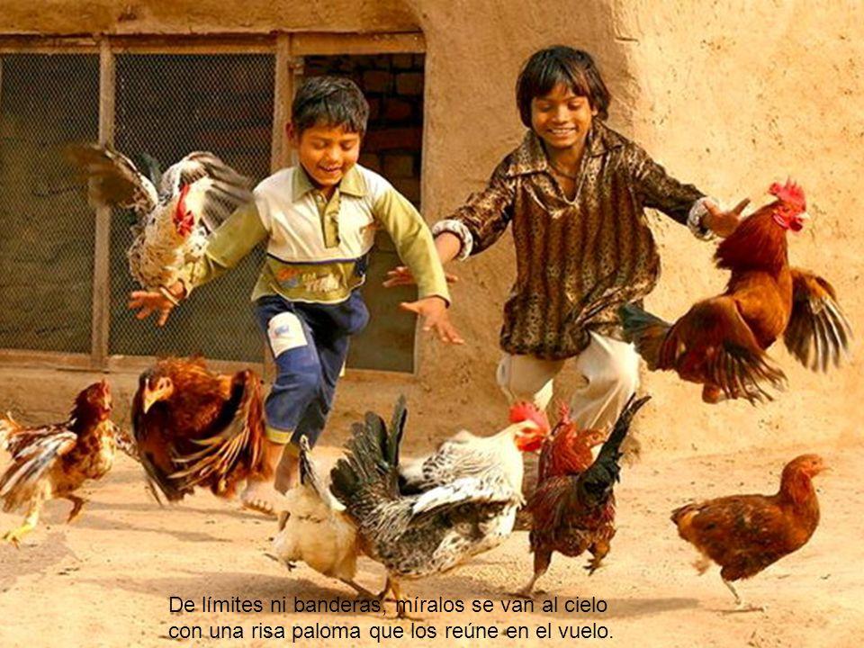 De límites ni banderas, míralos se van al cielo con una risa paloma que los reúne en el vuelo.