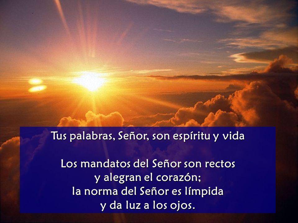 Tus palabras, Señor, son espíritu y vida
