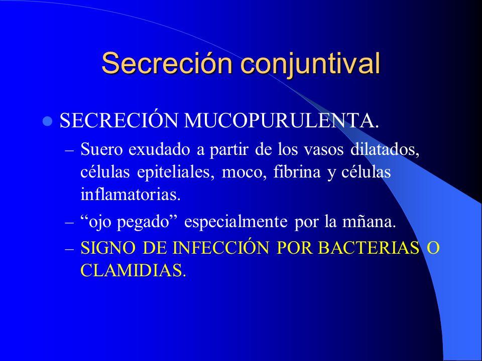 Secreción conjuntival