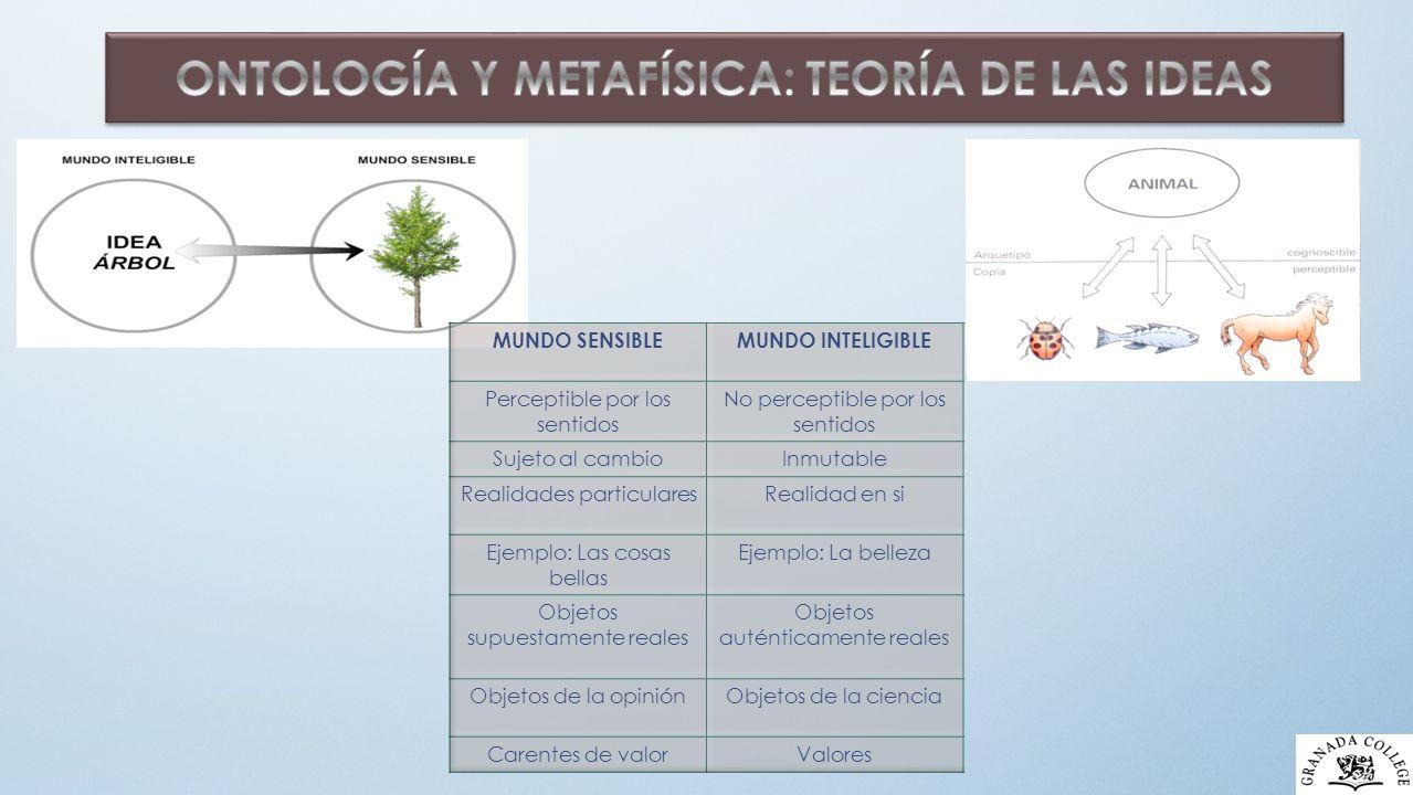 ONTOLOGÍA Y METAFÍSICA: TEORÍA DE LAS IDEAS