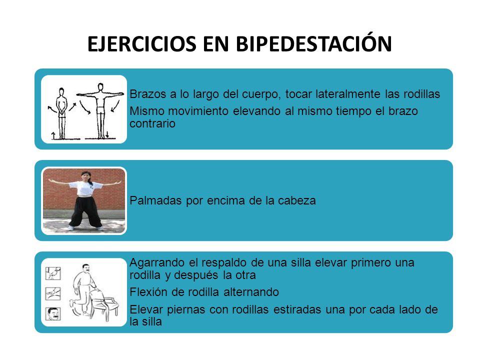 EJERCICIOS EN BIPEDESTACIÓN