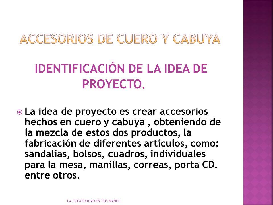 IDENTIFICACIÓN DE LA IDEA DE PROYECTO.