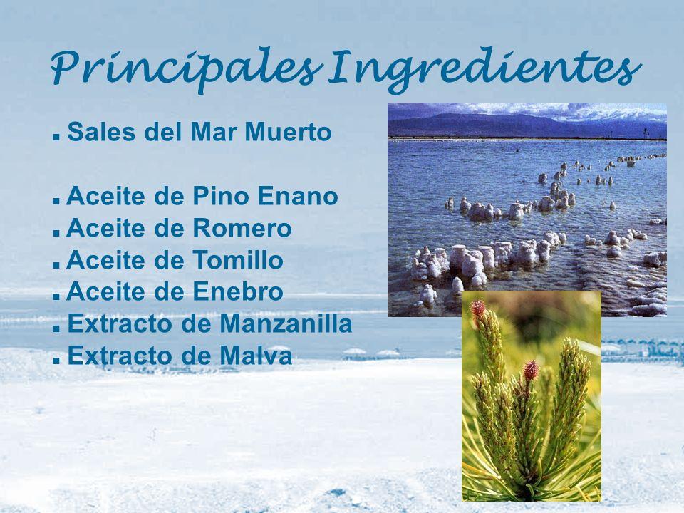 Principales Ingredientes
