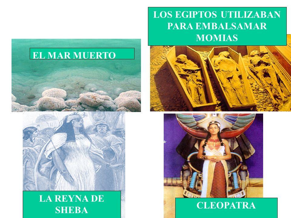 LOS EGIPTOS UTILIZABAN PARA EMBALSAMAR MOMIAS