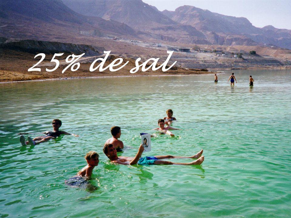 25% de sal Sin duda la alta concentración de sales y minerales que contienen sus aguas...