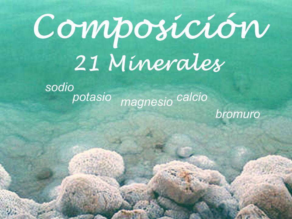 Composición 21 Minerales sodio potasio calcio magnesio bromuro
