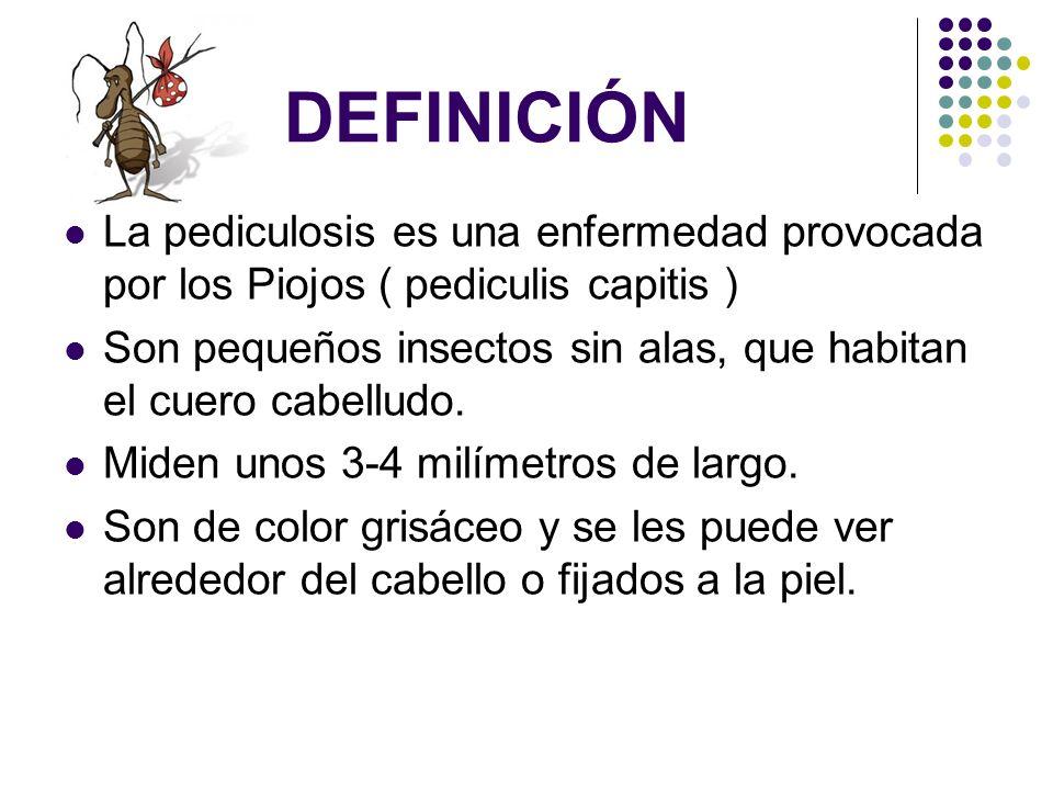 DEFINICIÓN La pediculosis es una enfermedad provocada por los Piojos ( pediculis capitis )