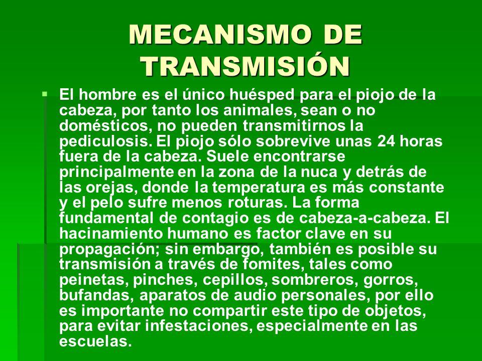 MECANISMO DE TRANSMISIÓN