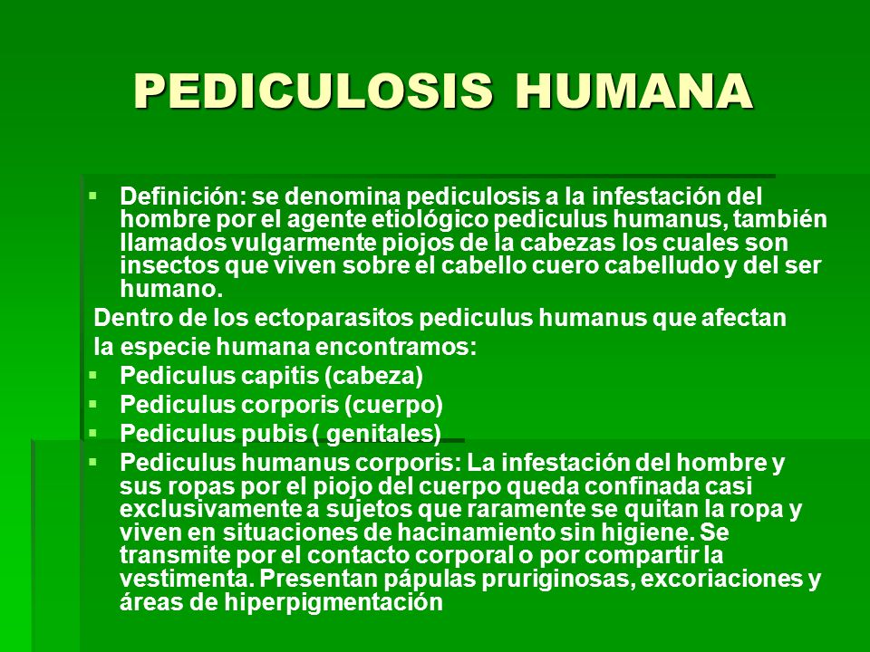 PEDICULOSIS HUMANA