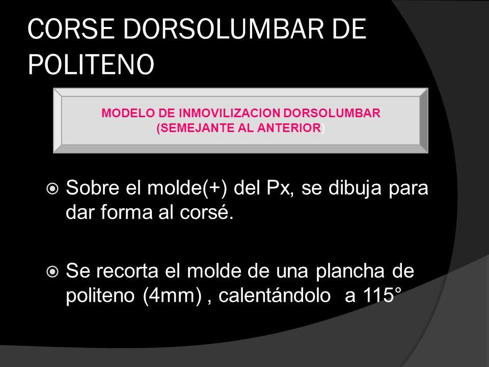 CORSE DORSOLUMBAR DE POLITENO