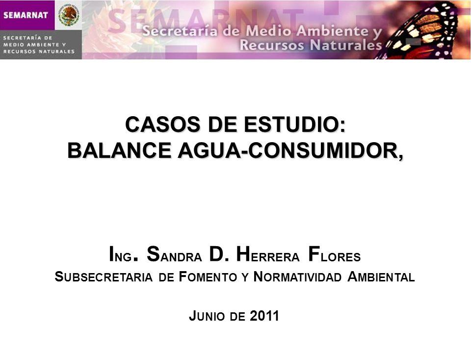 CASOS DE ESTUDIO: BALANCE AGUA-CONSUMIDOR,