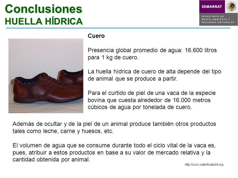 Conclusiones HUELLA HÍDRICA