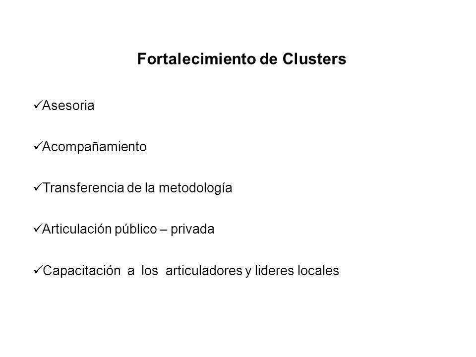 Fortalecimiento de Clusters