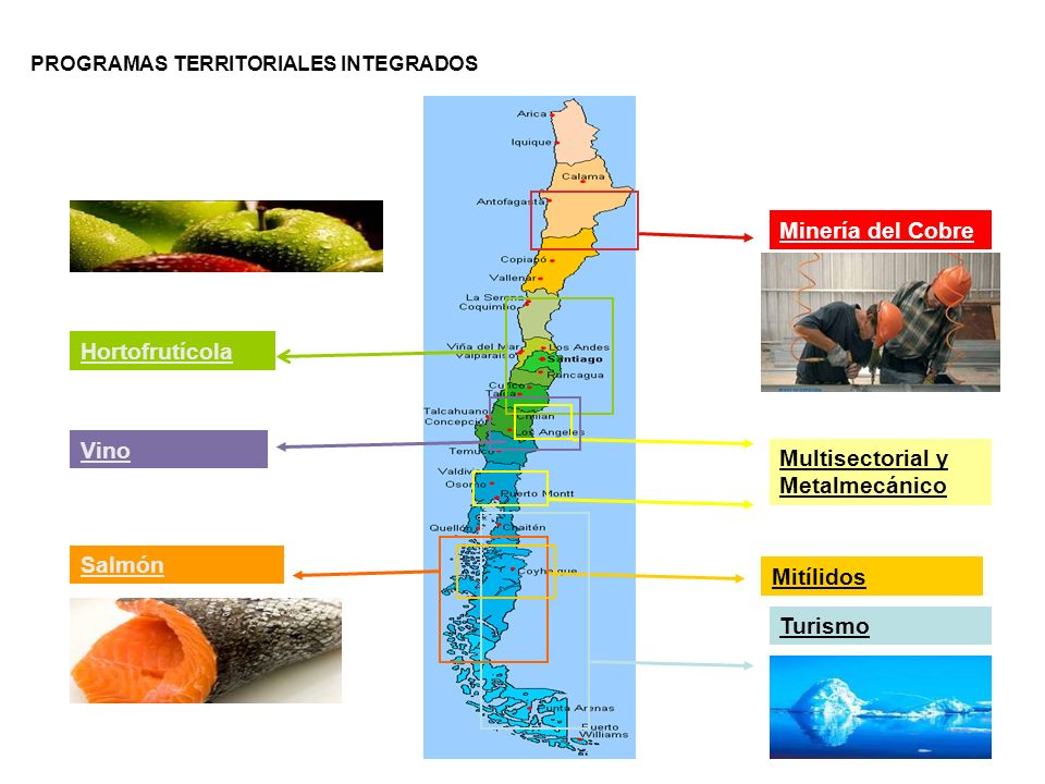 Ejemplo: caso Chile Minería del Cobre Hortofrutícola Vino