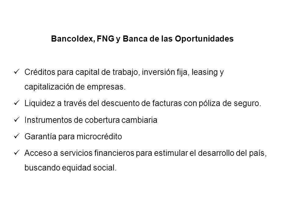 Bancoldex, FNG y Banca de las Oportunidades