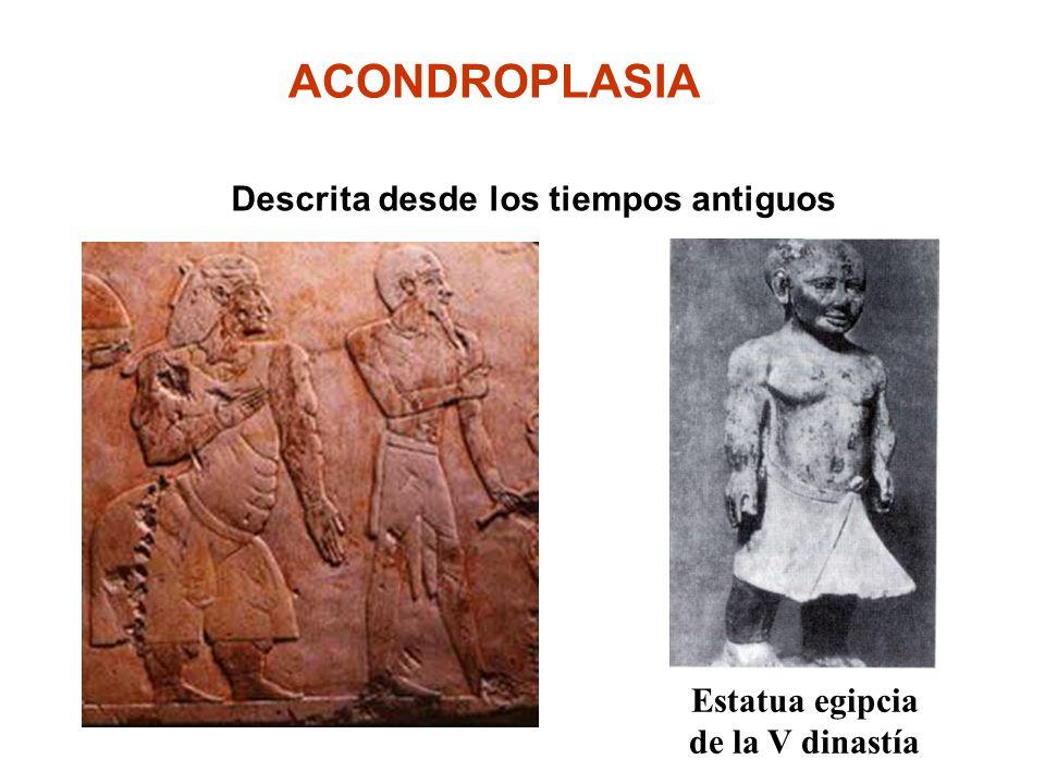 Estatua egipcia de la V dinastía