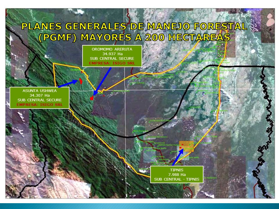 PLANES GENERALES DE MANEJO FORESTAL (PGMF) MAYORES A 200 HECTAREAS