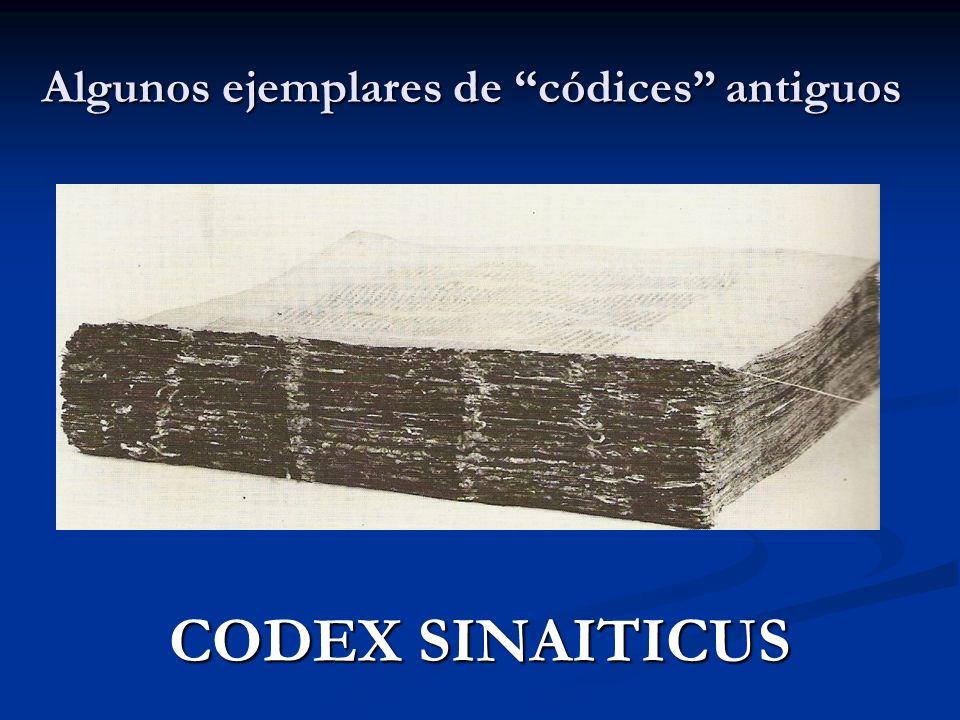 Algunos ejemplares de códices antiguos