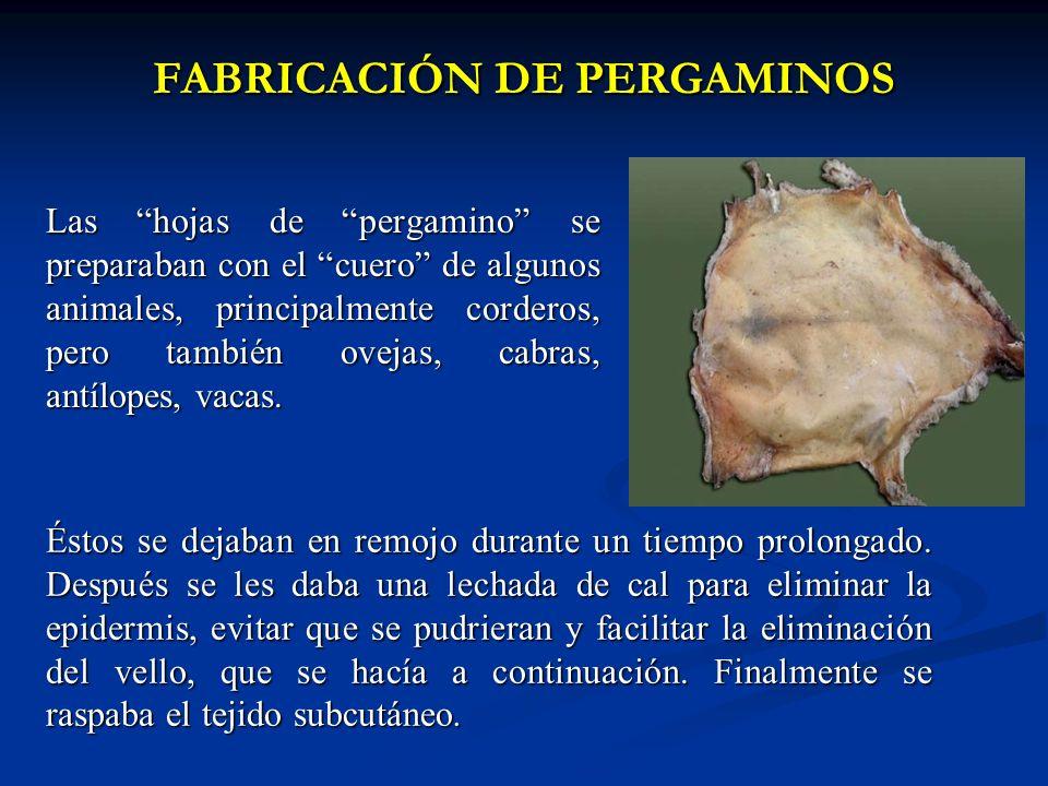 FABRICACIÓN DE PERGAMINOS