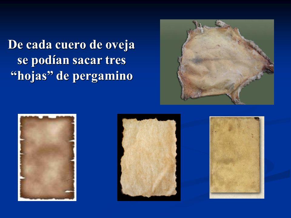 De cada cuero de oveja se podían sacar tres hojas de pergamino