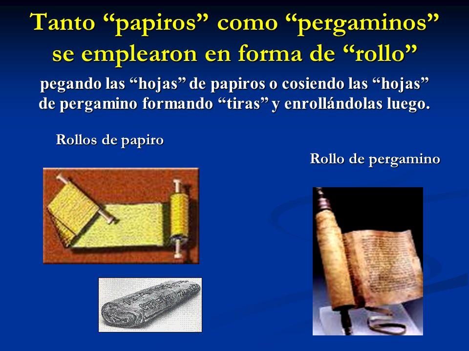 Tanto papiros como pergaminos se emplearon en forma de rollo