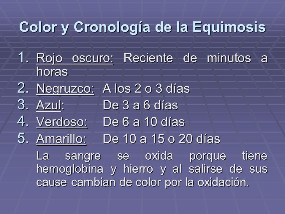 Color y Cronología de la Equimosis
