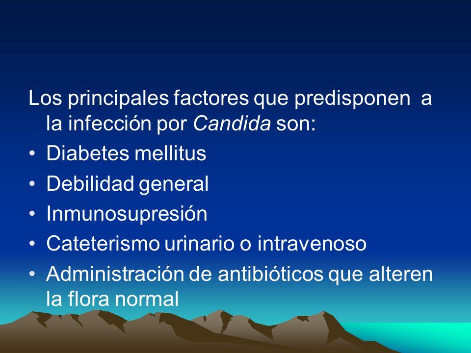Los principales factores que predisponen a la infección por Candida son: