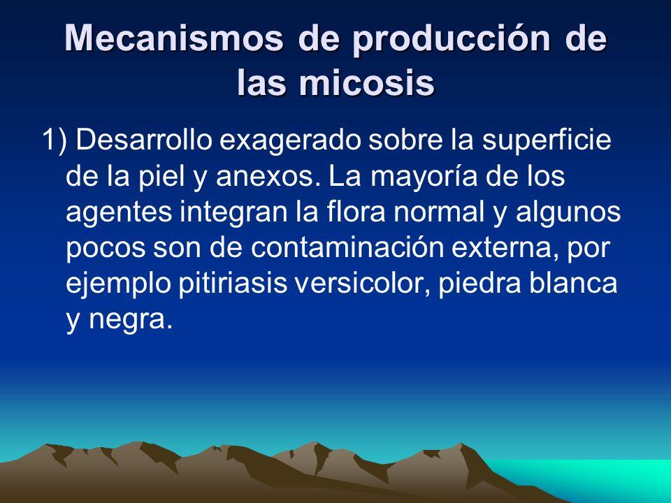 Mecanismos de producción de las micosis