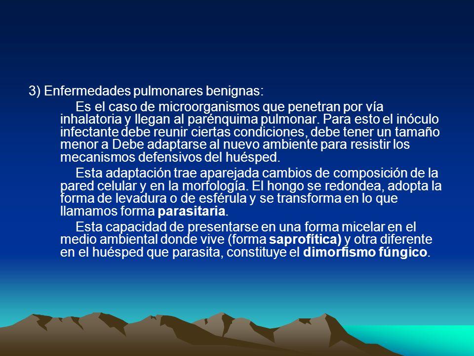 3) Enfermedades pulmonares benignas: