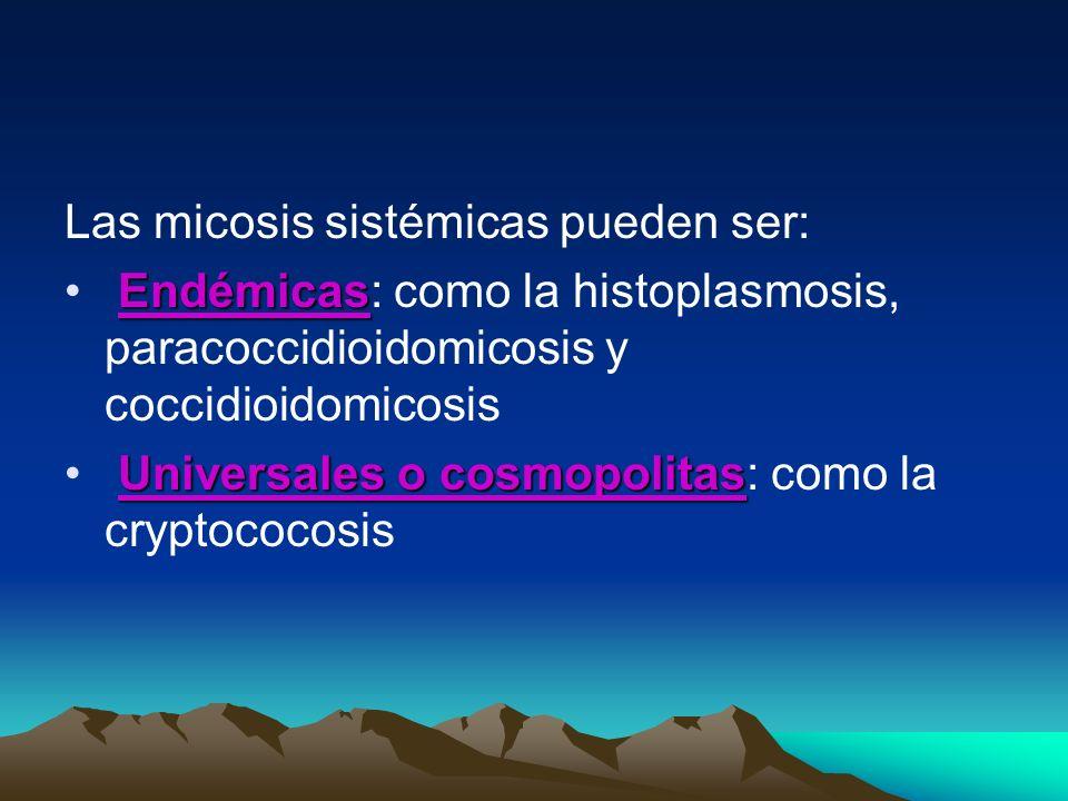 Las micosis sistémicas pueden ser: