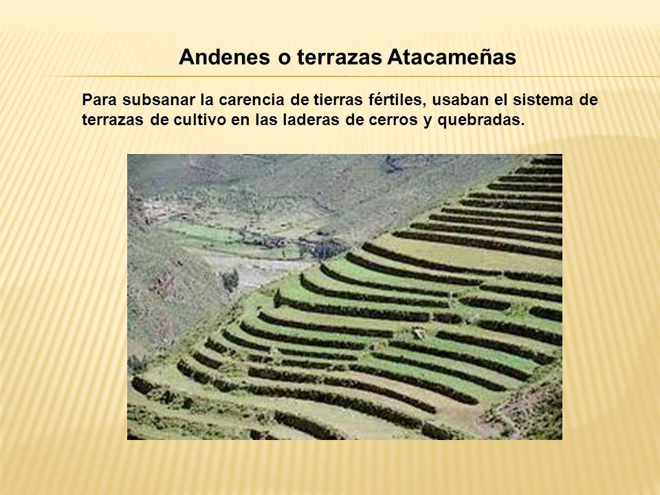 Andenes o terrazas Atacameñas