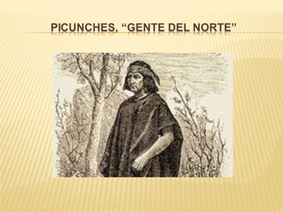 Picunches, Gente del norte