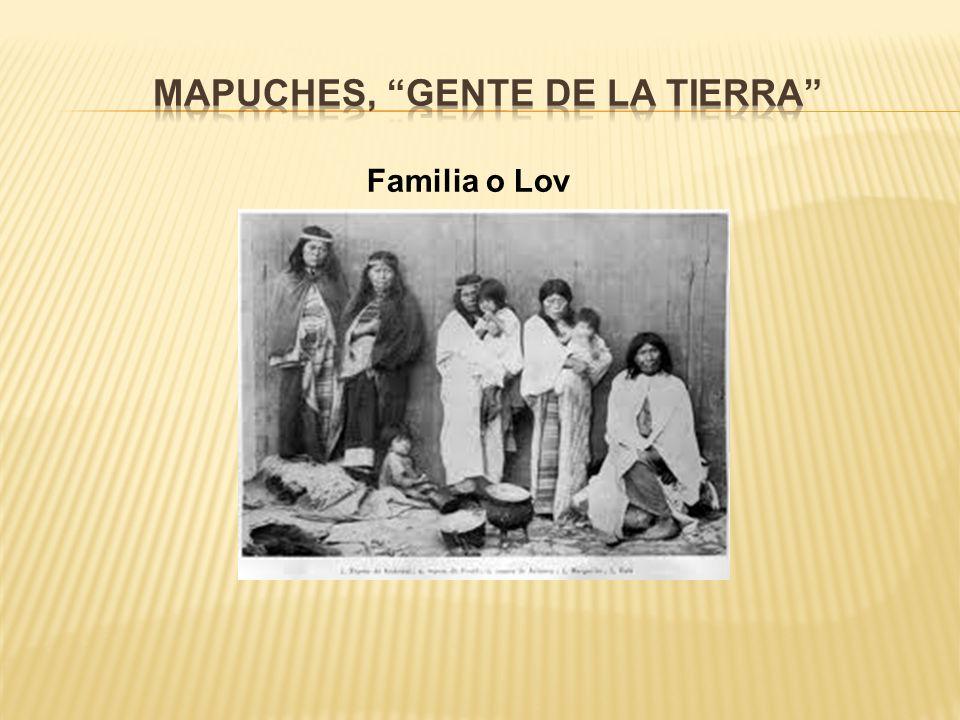 Mapuches, Gente de la tierra