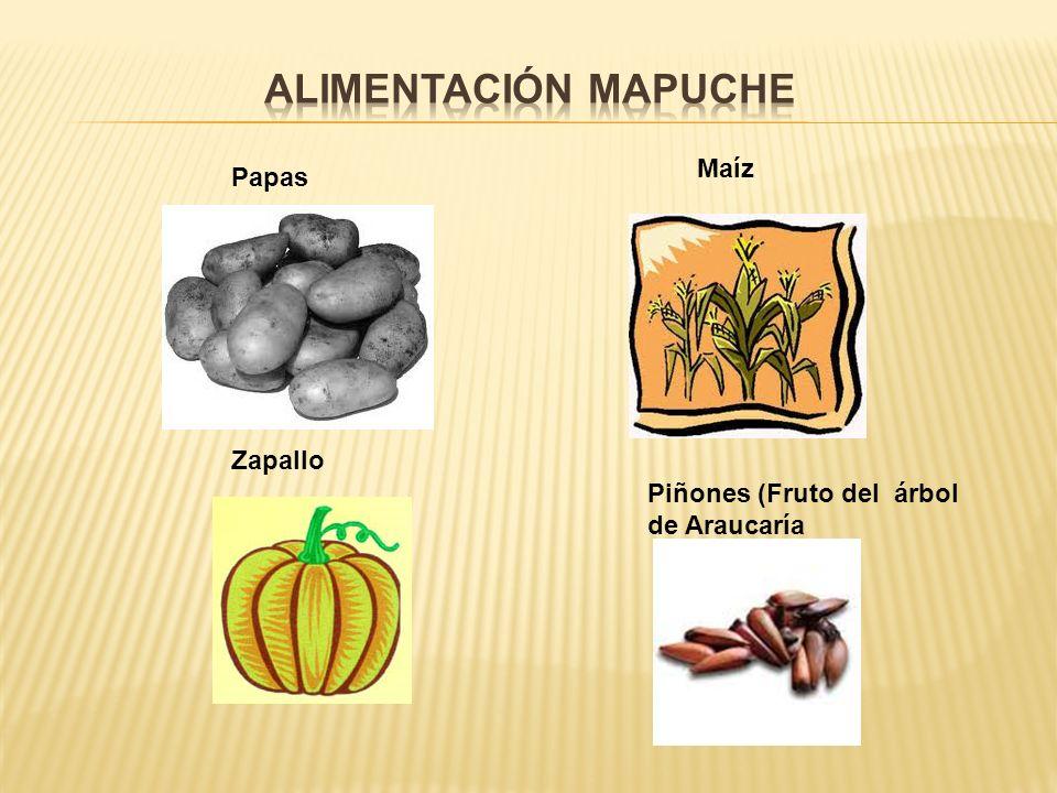 Alimentación Mapuche Maíz Papas Zapallo