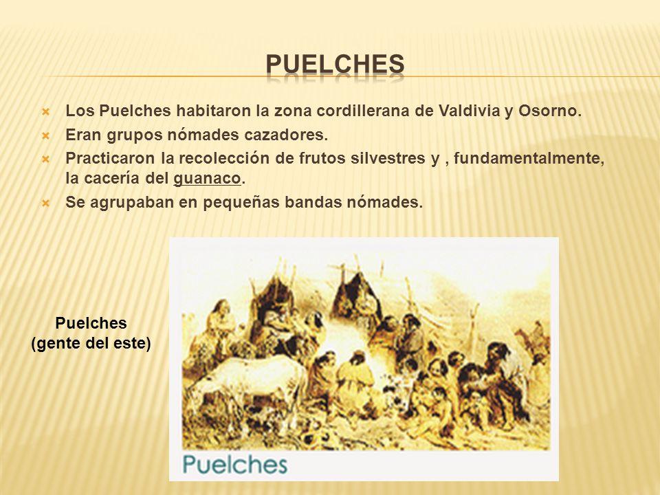 Puelches Los Puelches habitaron la zona cordillerana de Valdivia y Osorno. Eran grupos nómades cazadores.