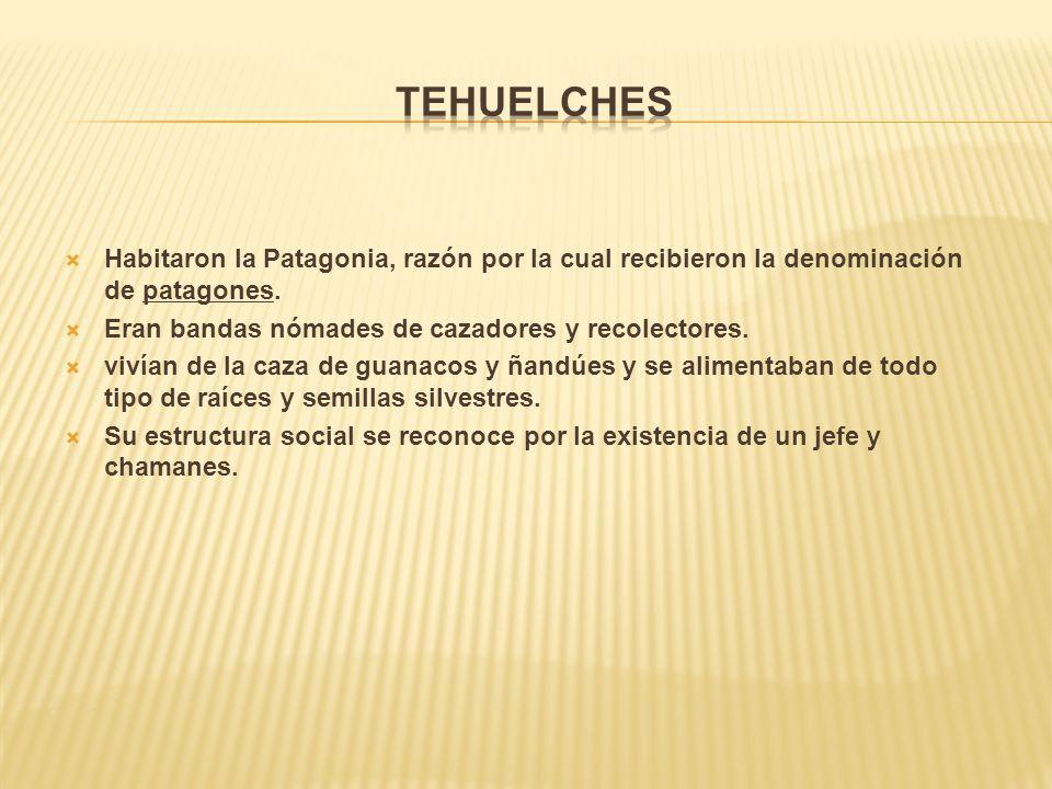 Tehuelches Habitaron la Patagonia, razón por la cual recibieron la denominación de patagones. Eran bandas nómades de cazadores y recolectores.