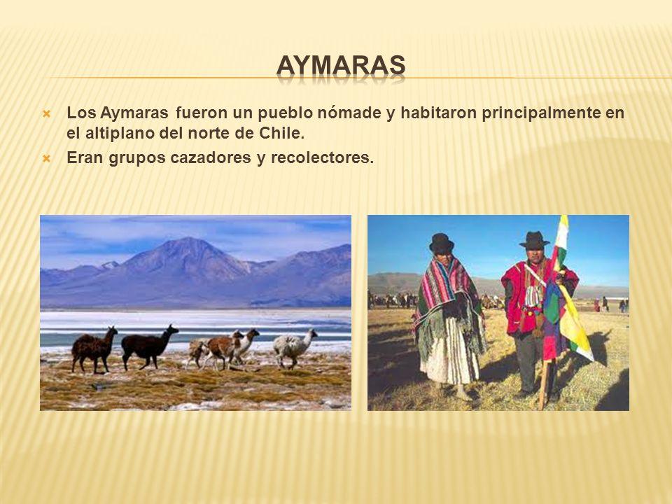 Aymaras Los Aymaras fueron un pueblo nómade y habitaron principalmente en el altiplano del norte de Chile.