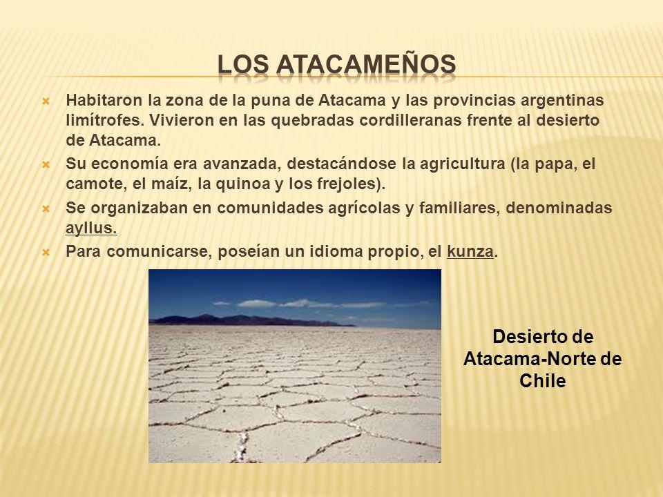 Desierto de Atacama-Norte de Chile