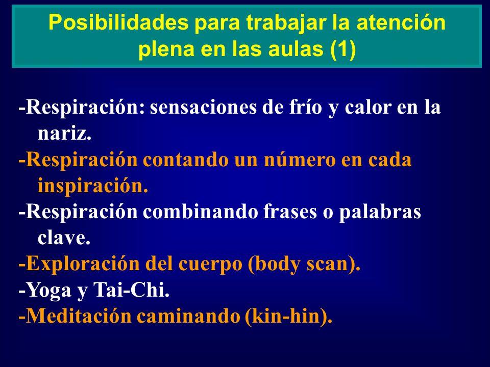 Posibilidades para trabajar la atención plena en las aulas (1)