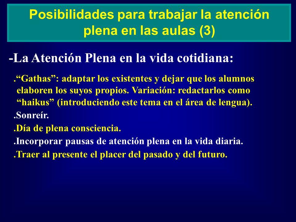 Posibilidades para trabajar la atención plena en las aulas (3)