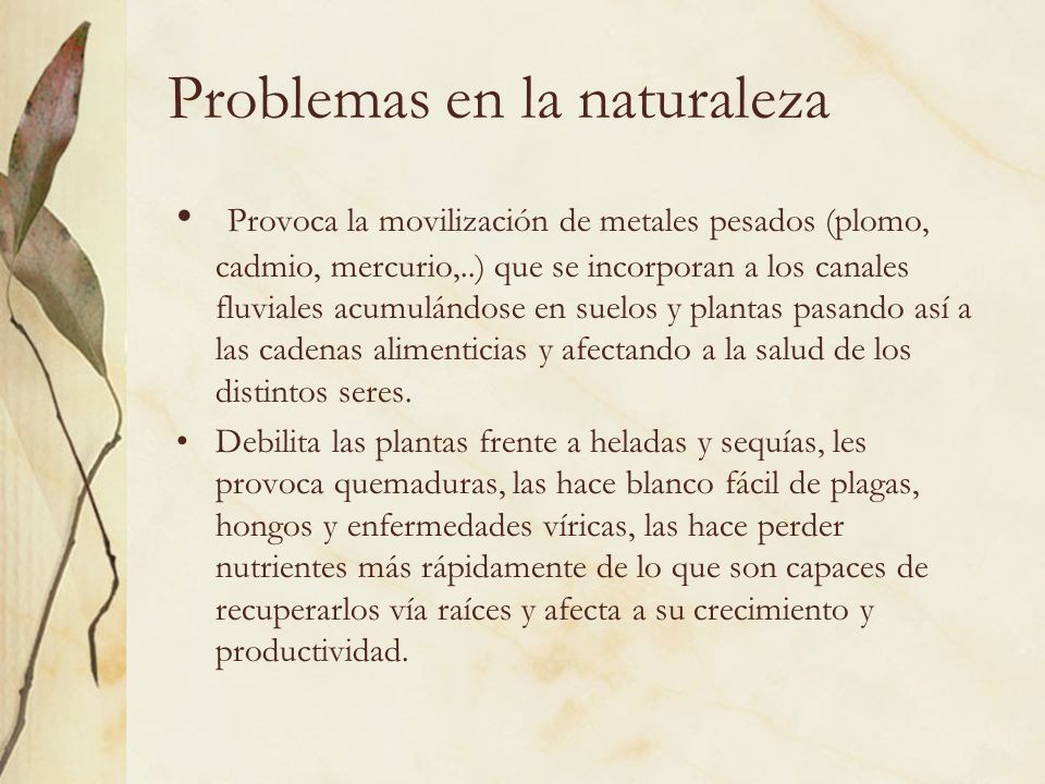 Problemas en la naturaleza