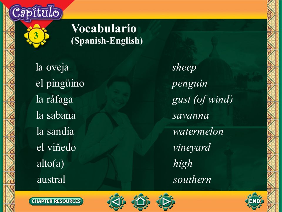 Vocabulario la oveja sheep el pingüino penguin la ráfaga